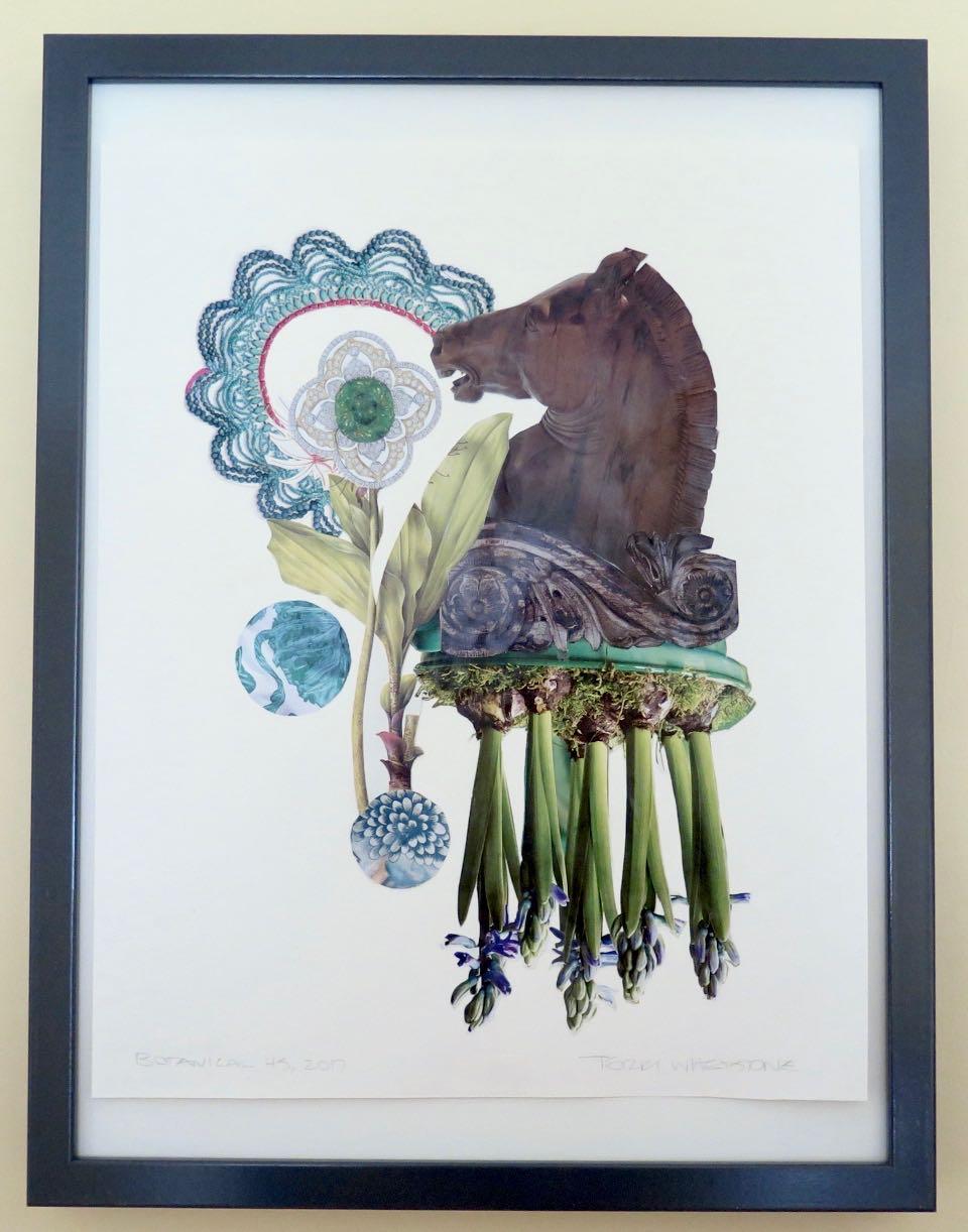 "Botanical 45, 2017, hand cut paper, vintage botanical print, glue on Arches paper, 13 ¾"" x 12"", framed: 17"" x 13"", 250 CAD"