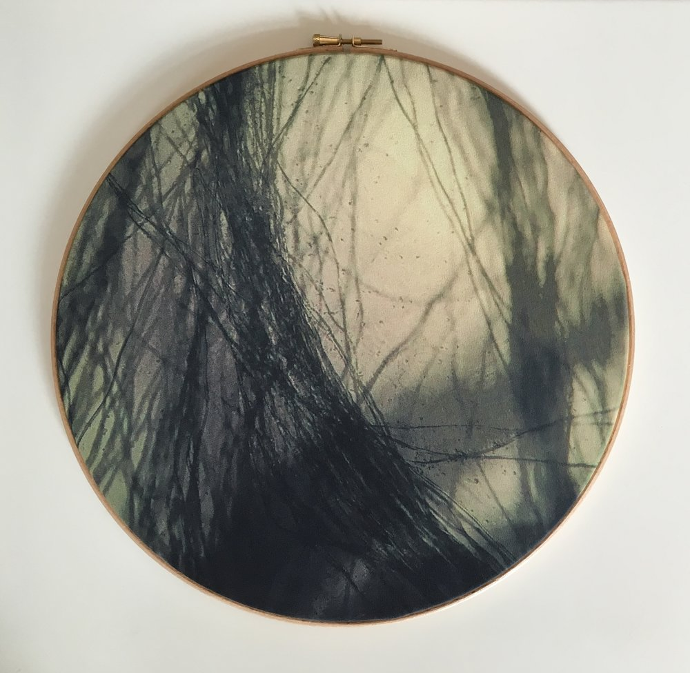 Cosms 1, 2015, Digitally printed micrographs on silk, wooden embroidery hoops, 36cm x 36cm x 1cm, 150 CAD each or all 400 CAD for the triptych