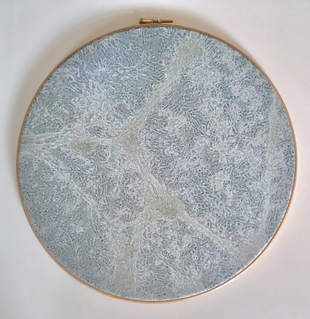 Cosms 2, 2015, Digitally printed micrographs on silk, wooden embroidery hoops, 36cm x 36cm x 1cm,150 CAD each or all 400 CAD for the triptych