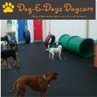 DogEDayz2.png