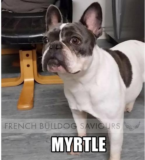 MyrtleHome.jpg