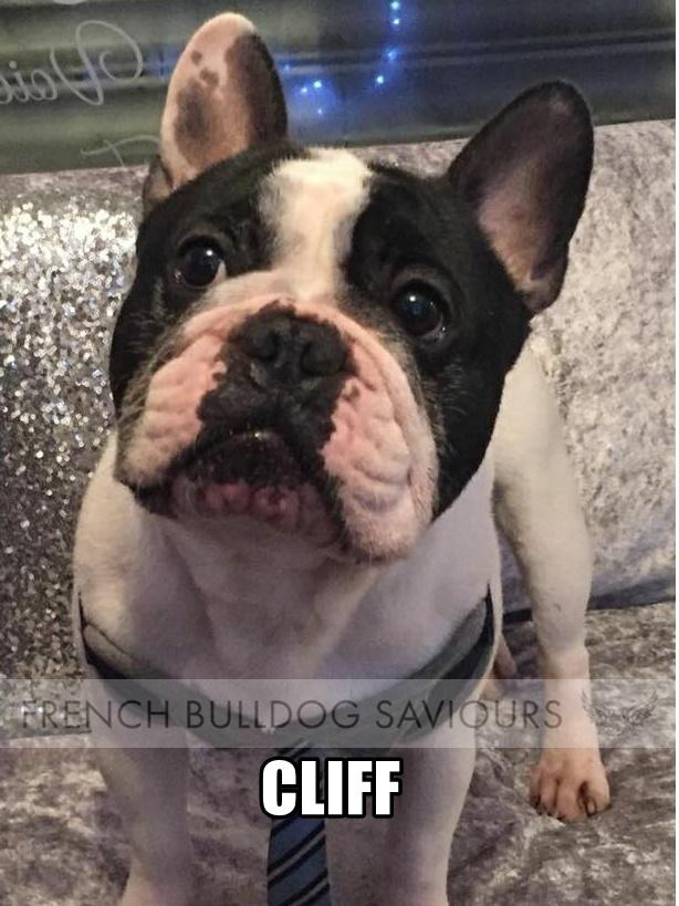 CliffG.jpg