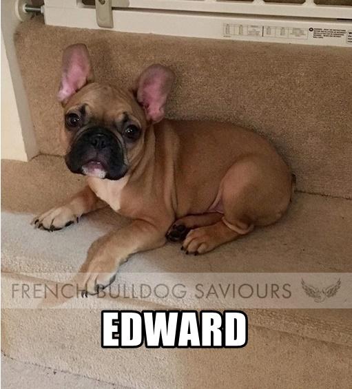 EdwardG.jpg
