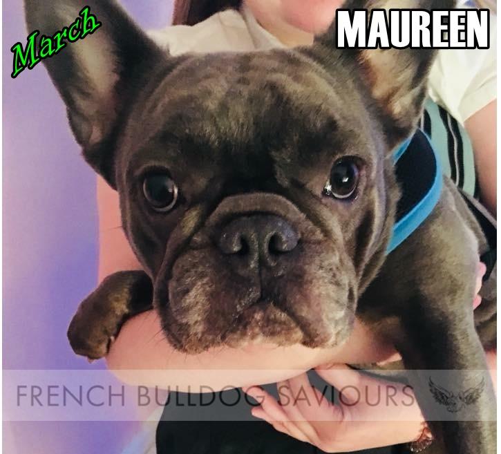 MaureenG.jpg