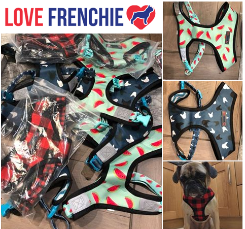 Frenchie Love.png
