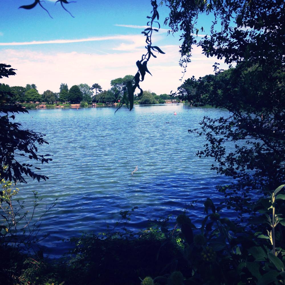 Norwood Lakes