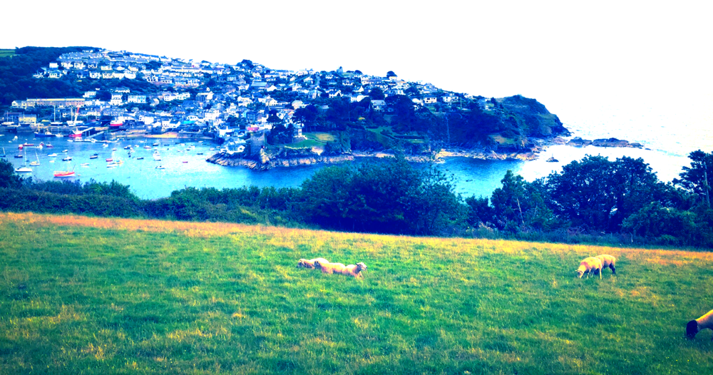 View over Fowey port