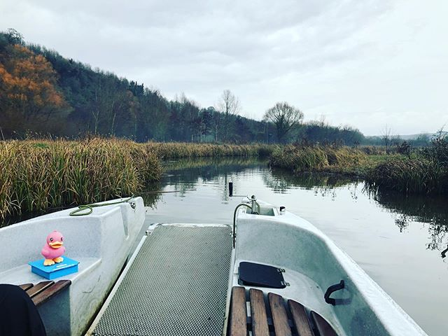 Coldest day of the year. Let's go on a boat trip! Check out our experience of Arundel Wetlands Centre online now #maternityleavelife #cold #winter #boat #wildlife #arundel #sussex #wildfowl #onthewater @wwtarundel