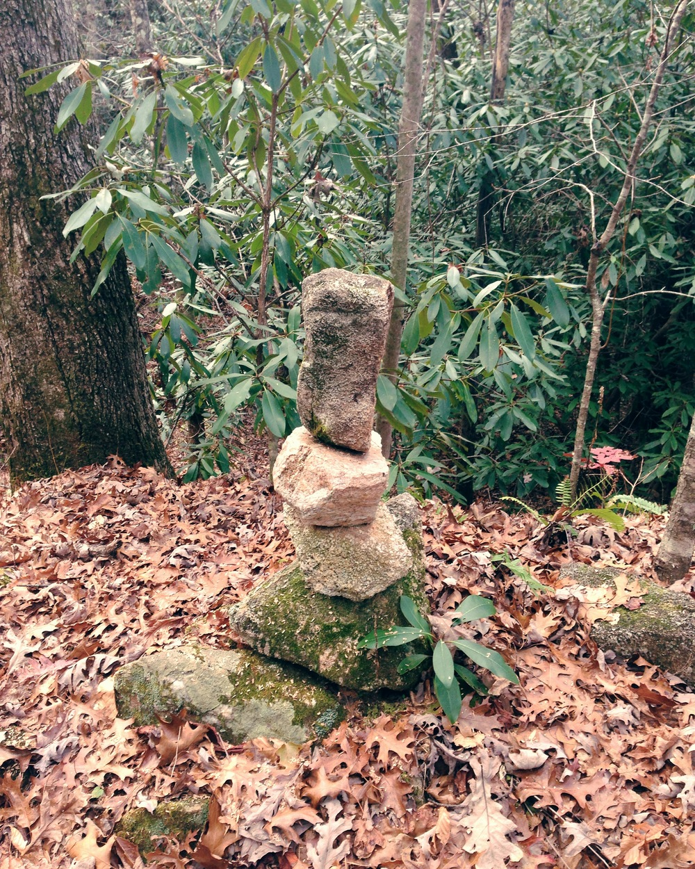 Cairn on the Fisher/Hambidge trail network