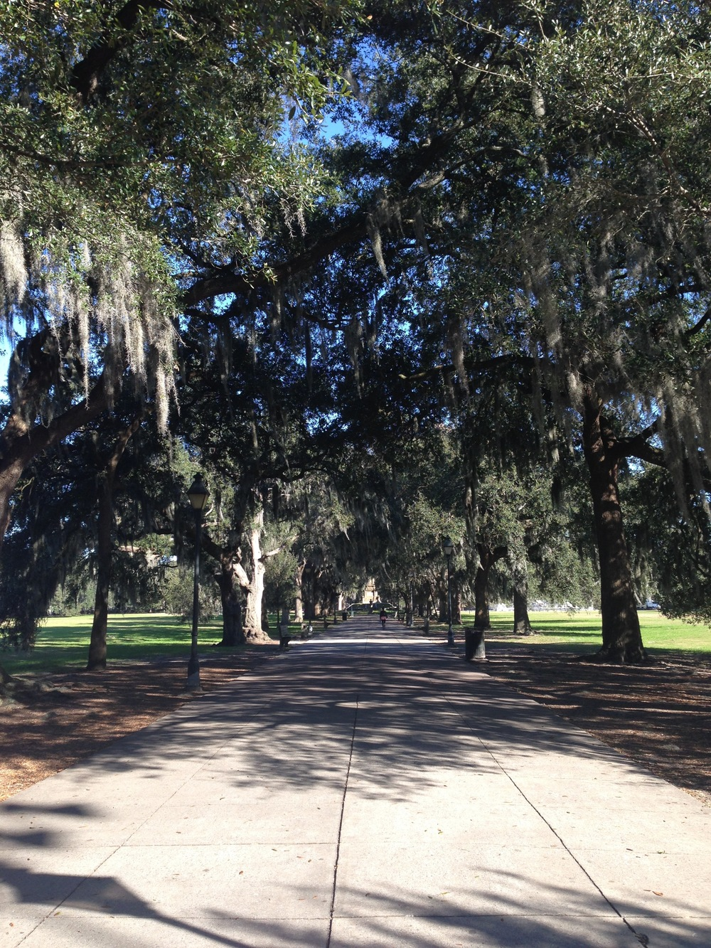 Heading into Forsyth Park.