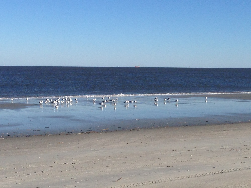 Tybee Island beach.