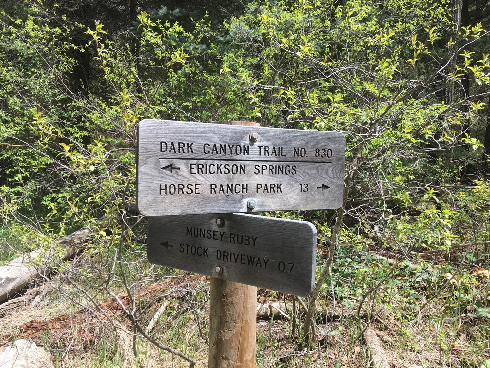 We took the Horse Ranch trail, which brings you into the heart of the canyon.