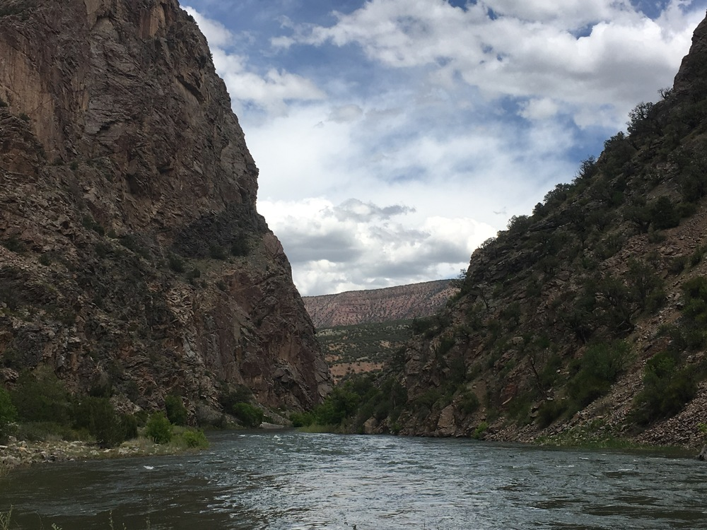 The mighty Gunnison River, with double canyon walls.