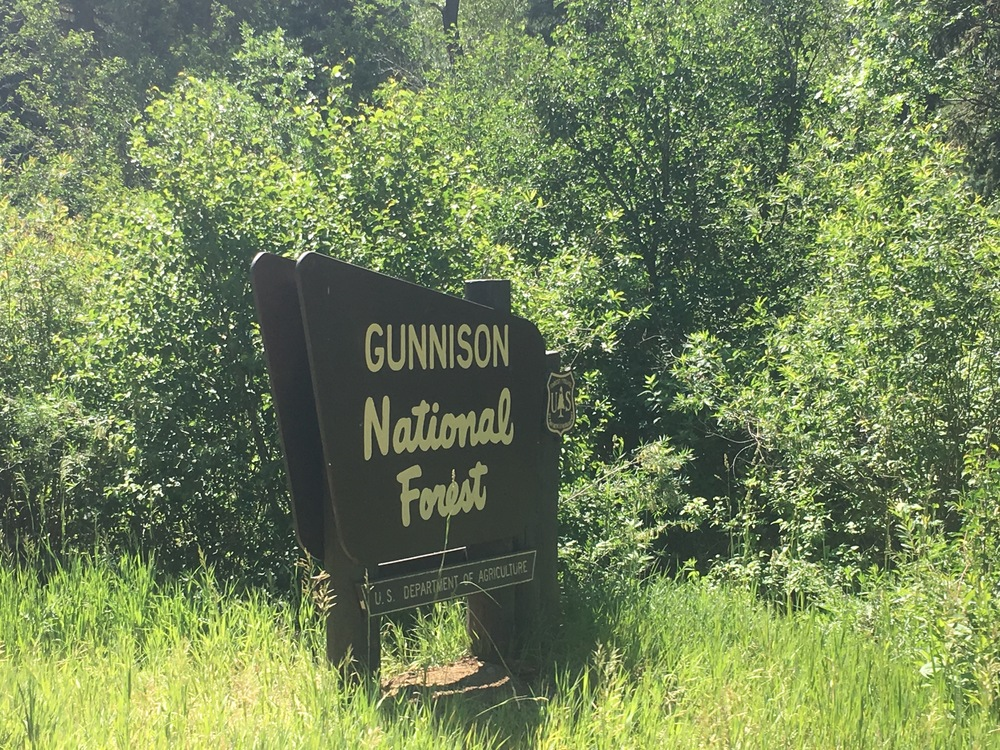 Entering Gunnison National Forest.