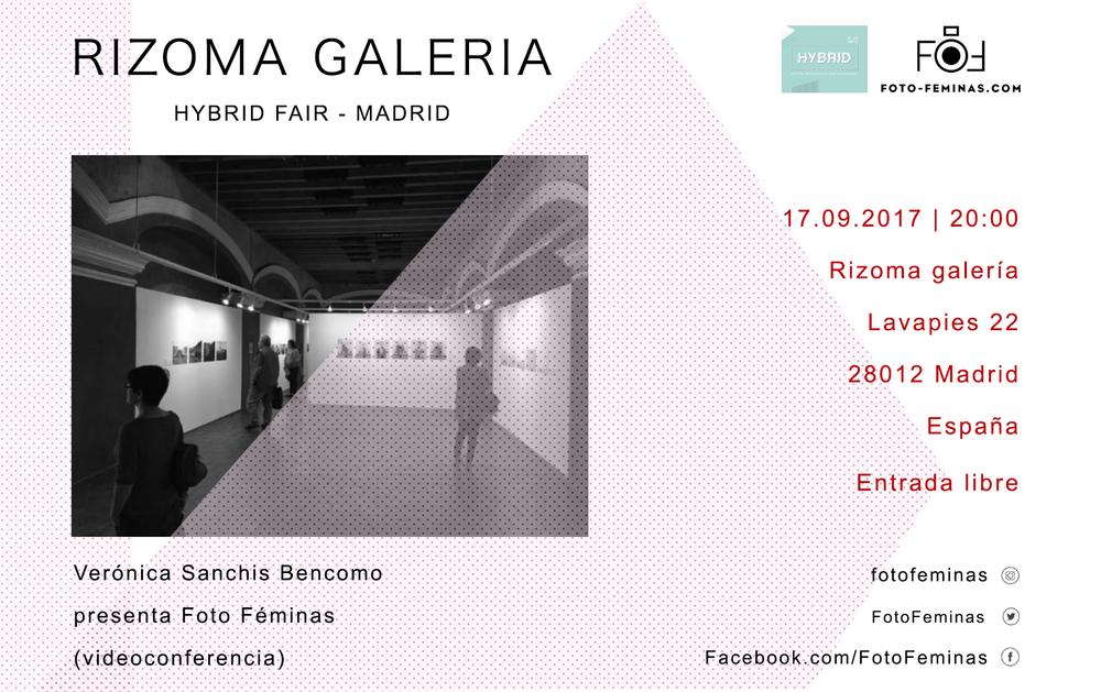 galeria_rizoma.png