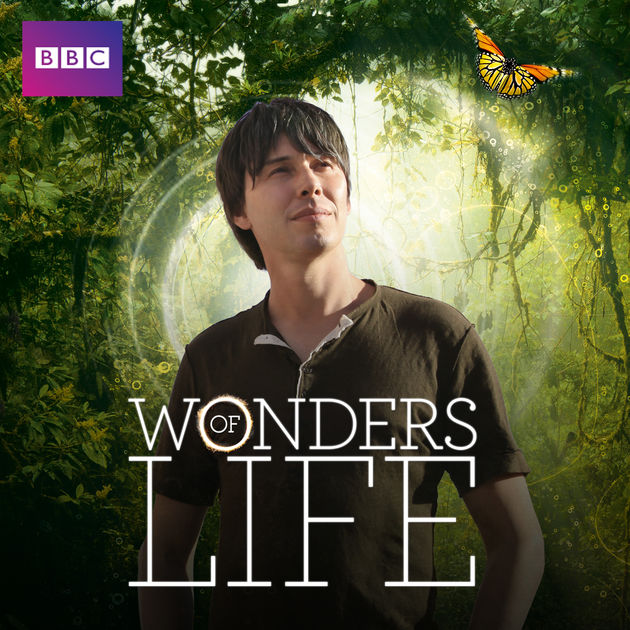 wonders of life.jpg