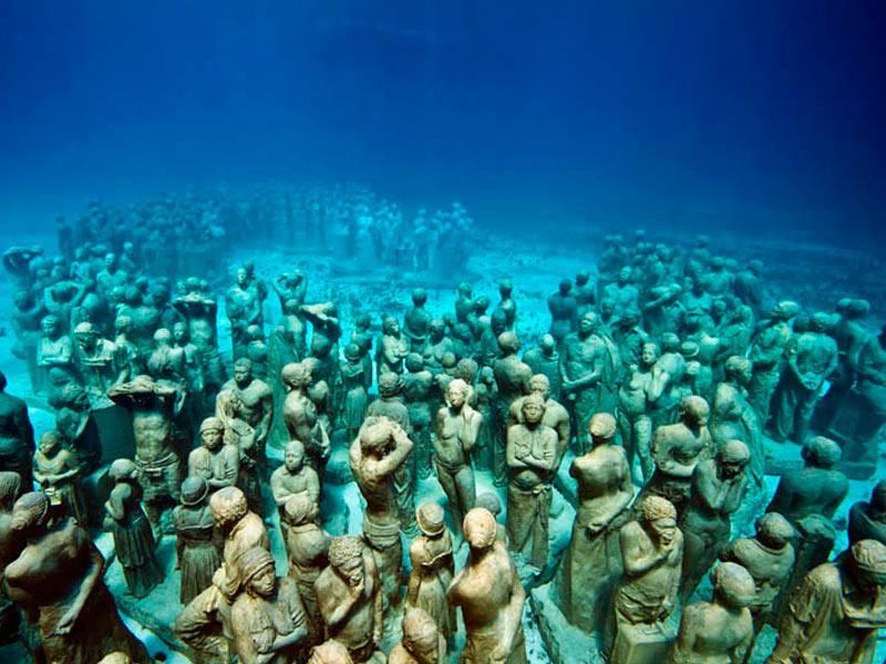 Musa-Aquaworld.jpg