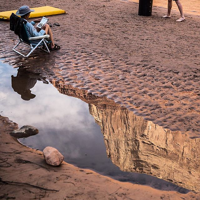 A little Colorado riverside relaxing with the Grand Canyon in a puddle. I think this is what they call #readinggoals
