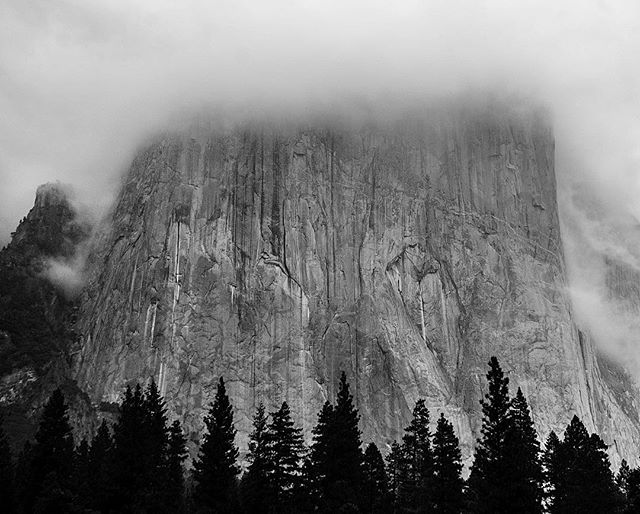 El Capitan cloaked in cloud.