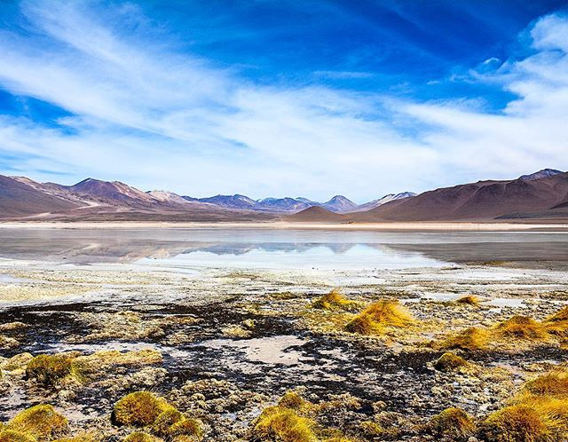 Laguna Blanca in southern Bolivia, one of the first things you see after crossing the Chilean-Bolivian border on the road leading out of the Atacama Desert. A perfect introduction to the colors of the Bolivian Altiplano.