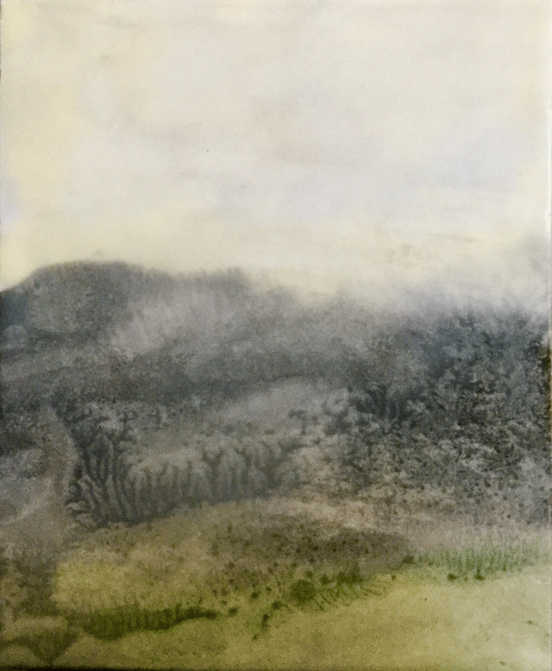 Roan Mountain ~ 5x7
