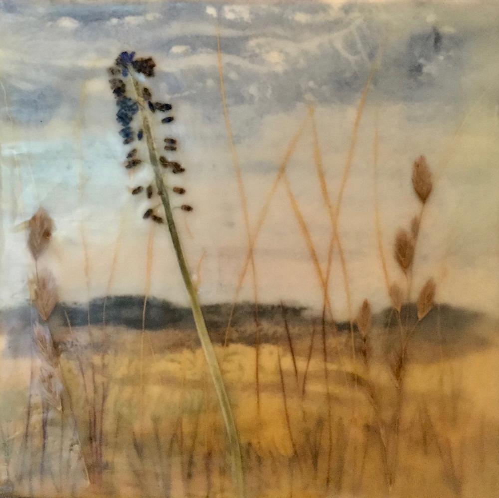 Grassland 2 ~ 8x8 ~ SOLD