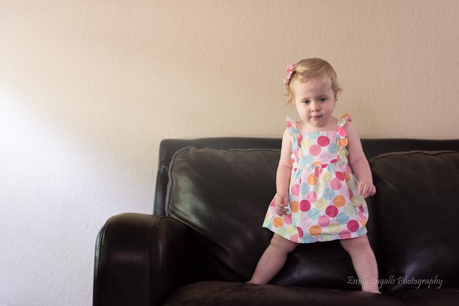 Cassidy on the sofa