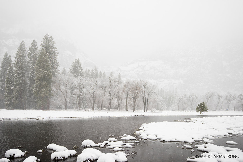 Open Pond in Winter Yosemite Valley · Photography by Maike Armstrong