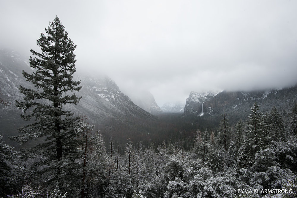 Cold Early Morning Tunnel View · Photography by Maike Armstrong