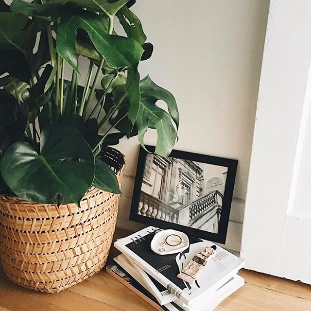 Why it's great to have your own place: deciding that books are their own shelves. #findingsolace . . . . #belmto #homedecor #styleinspiration #apartmentdecor #apartmenttherapy #comfort #minimalist #artforhome #art #photography #fashion #baskets #blackandwhite #thingstodo #diy #livingroomdecor #livingroom #bookshelf