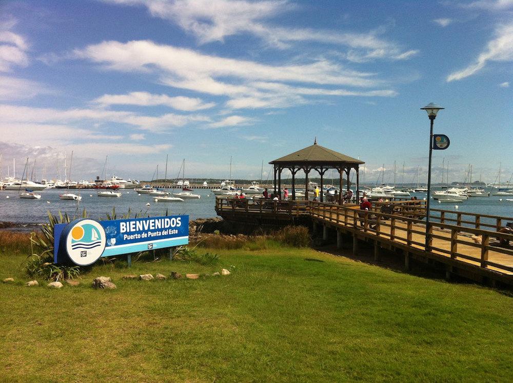 Punta del Este  Harbor