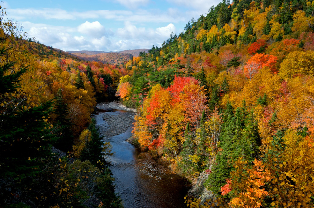 Near the Cabot Trail in Nova Scotia. Photographer Scott Munn
