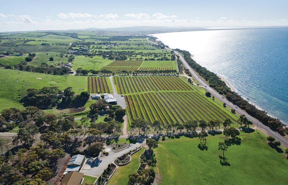 Boston Bay Wines by Air | Photo by: Boston Bay Wines