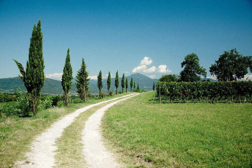 Route to Franciacorta | Photo Credit: Artamonov Timor