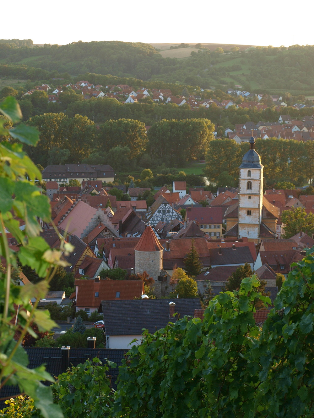 Sommerhausen - Viewed from the Vineyard