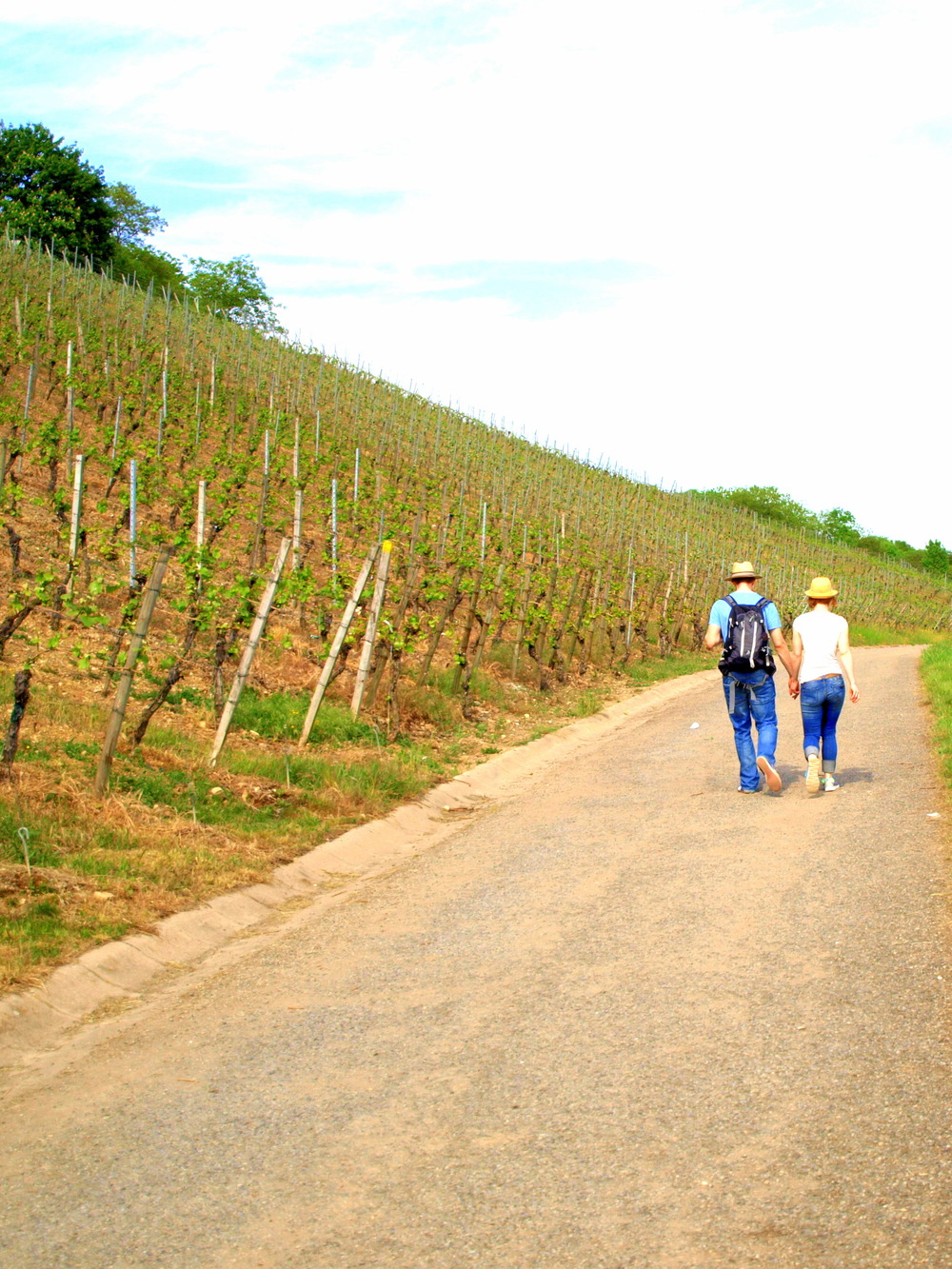 Wandering through the Randersacker vineyards.jpg