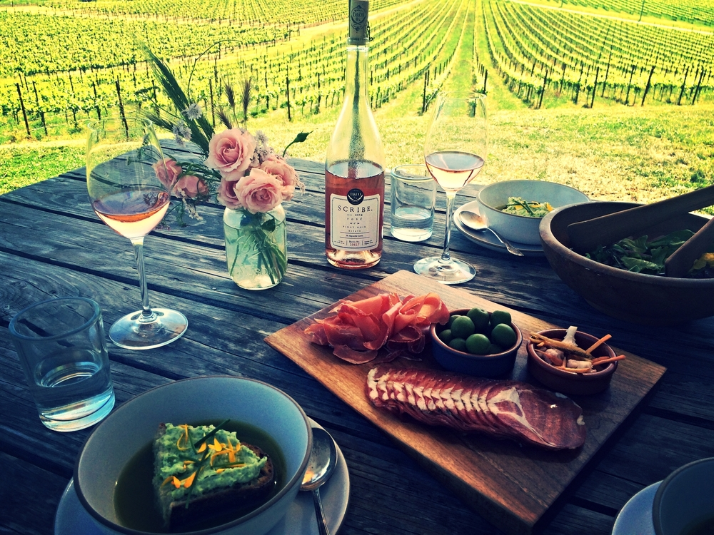 Wine Tourist - California Rose - Tasting experience at Scribe Winery - Photo credit Leslie Rosa