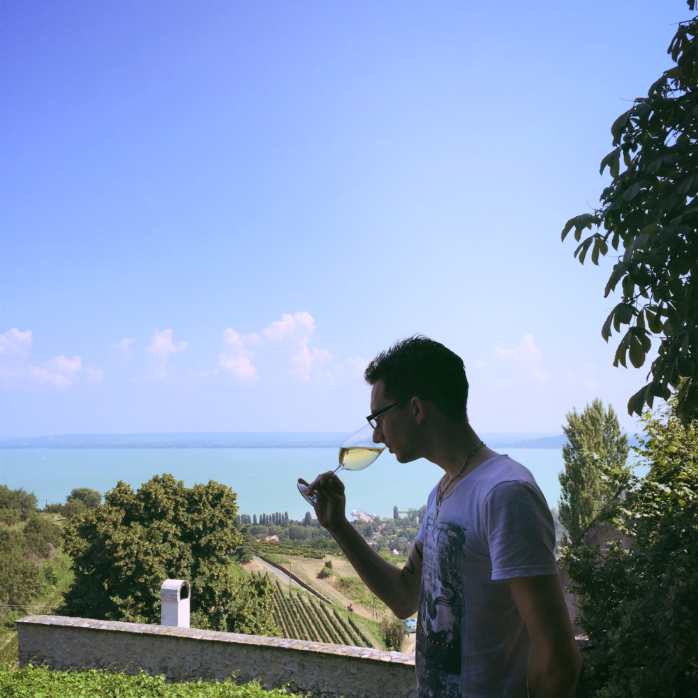 Sipping Wine in the Vineyards of Lake Balaton