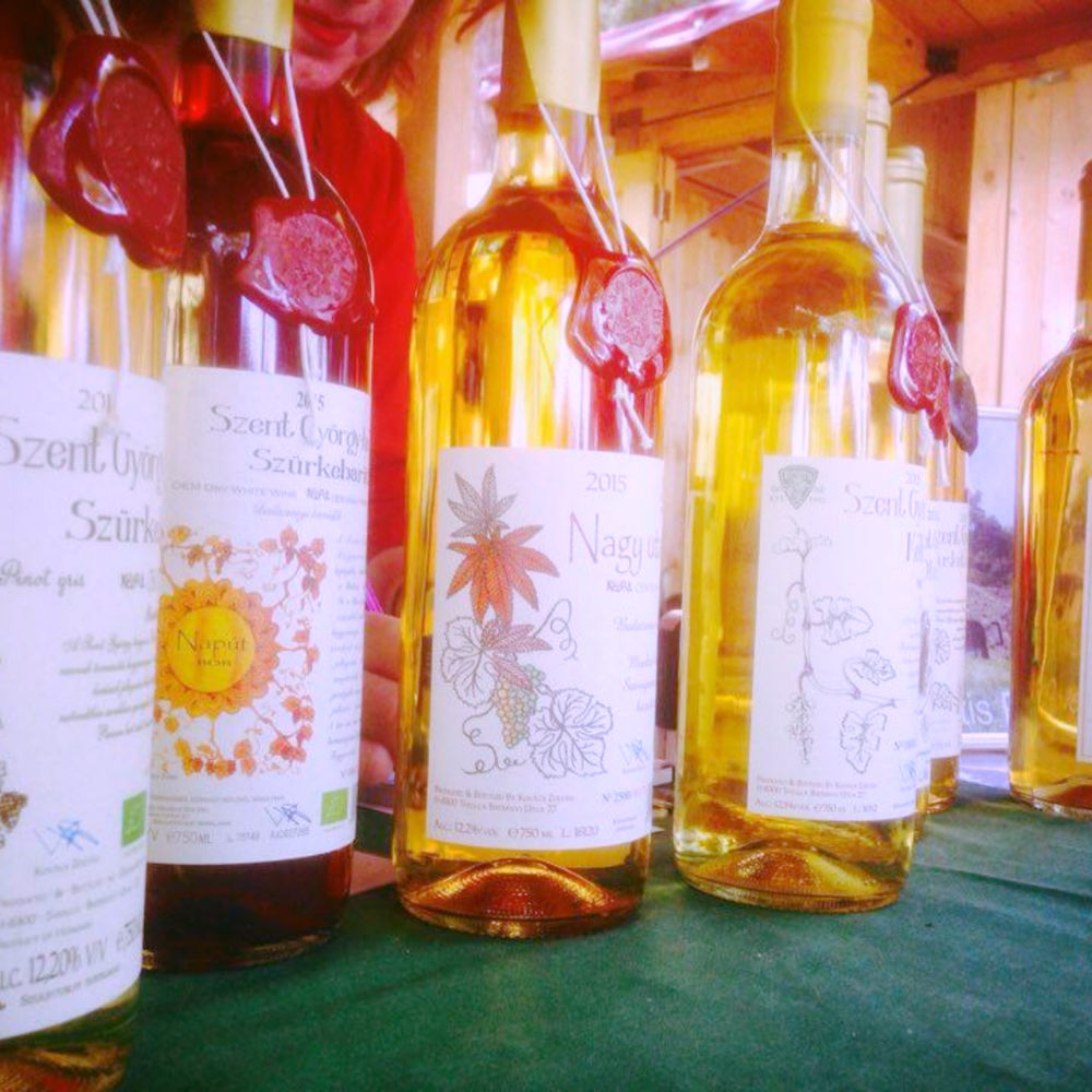 Tasting of the colourful selection of BioVitis, first Hungarian Biodynamic Winery