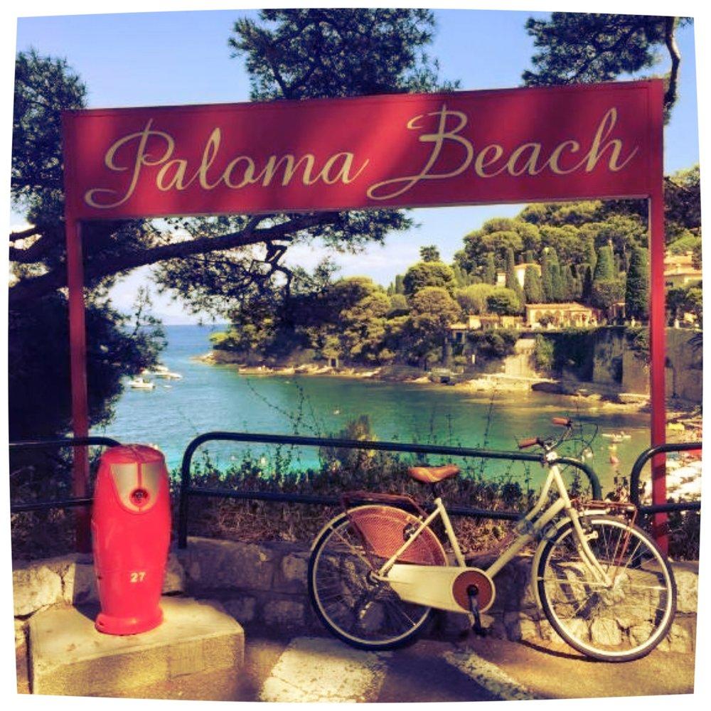 August 2015 - Paloma Beach