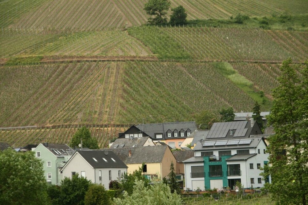 The steep vineyards climb up the hillsides behind the villages.