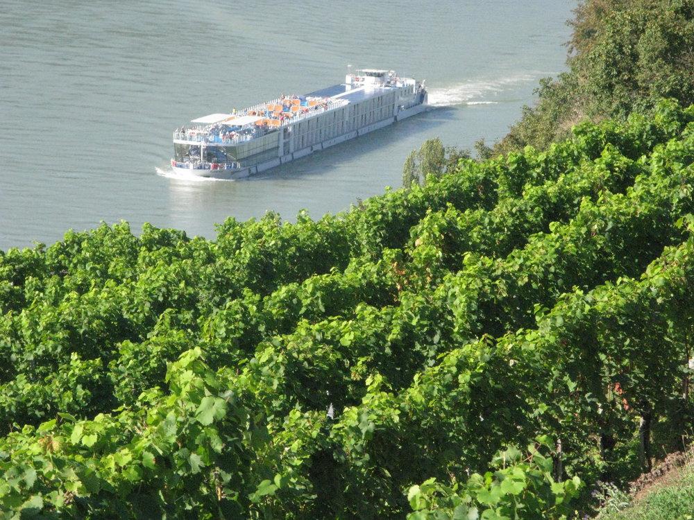 Austria - Vineyards along the Danube