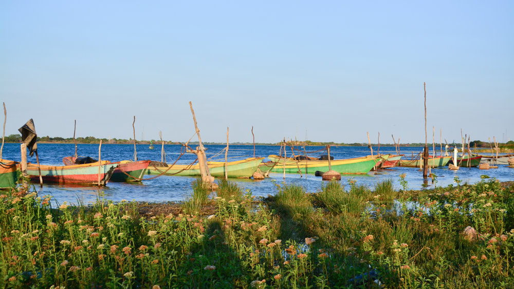 Small boats at the São Francisco River Banks.JPG