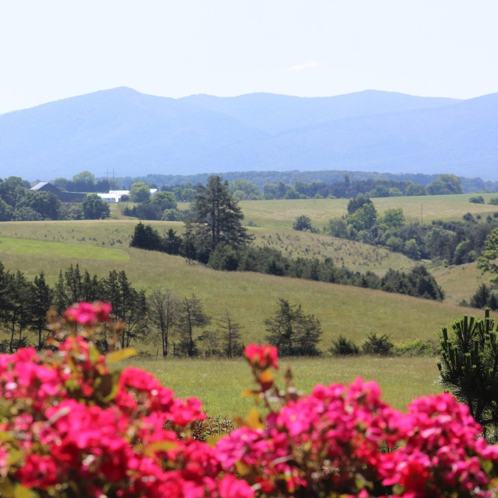 SHENANDOAH VALLEY | VIRGINIA