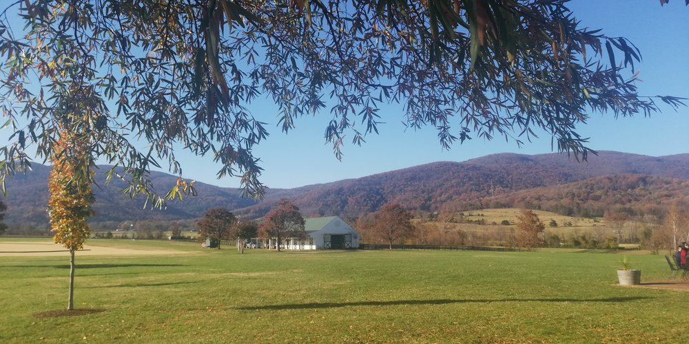 A view of the Blue Ridge Mountains at King Family Vineyards in Central Virginia.