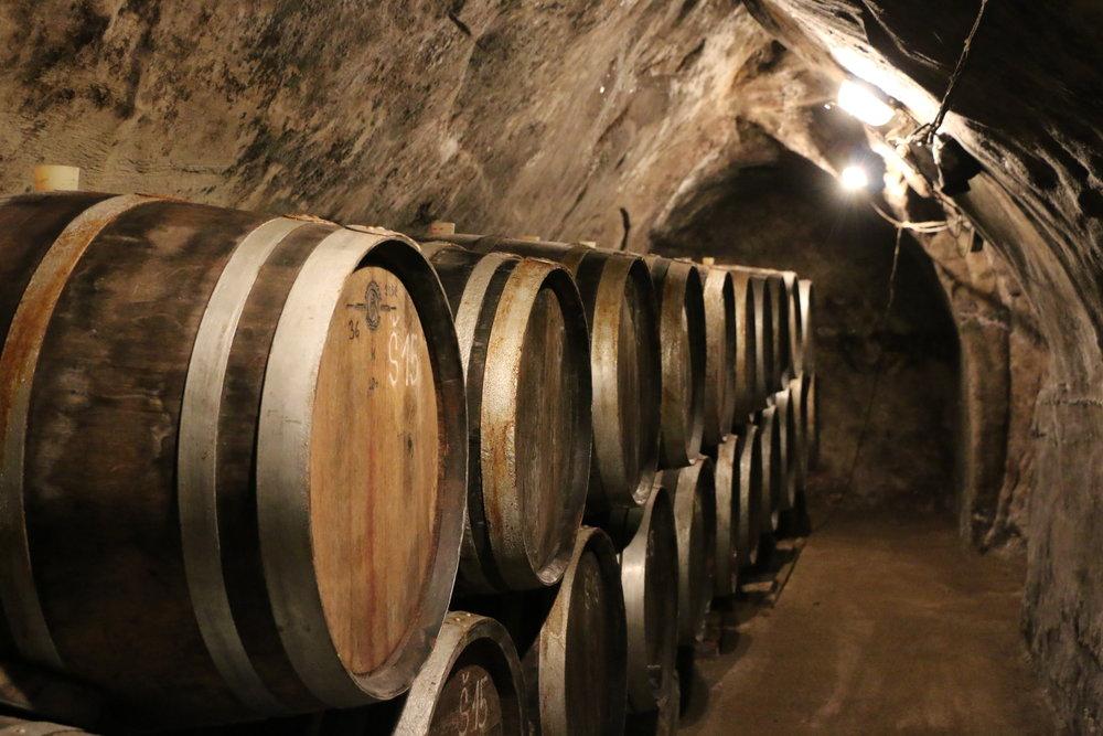 The wine cellar at Novy Saldorf