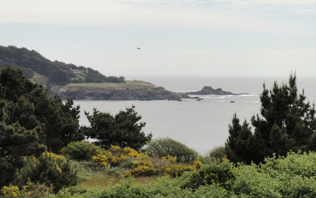 Photo of Mendocino