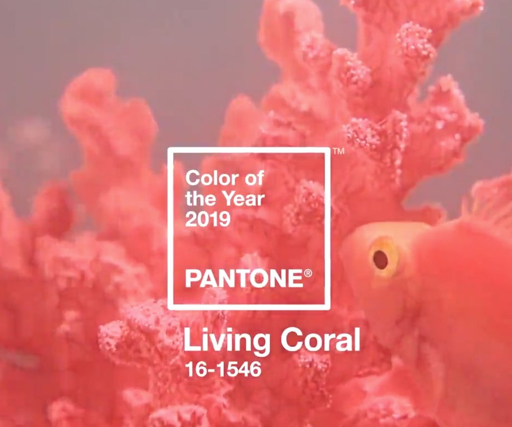 A shade of orange with a golden undertone, Pantone Color of the Year (2019): Living Coral. Photo: Pantone.