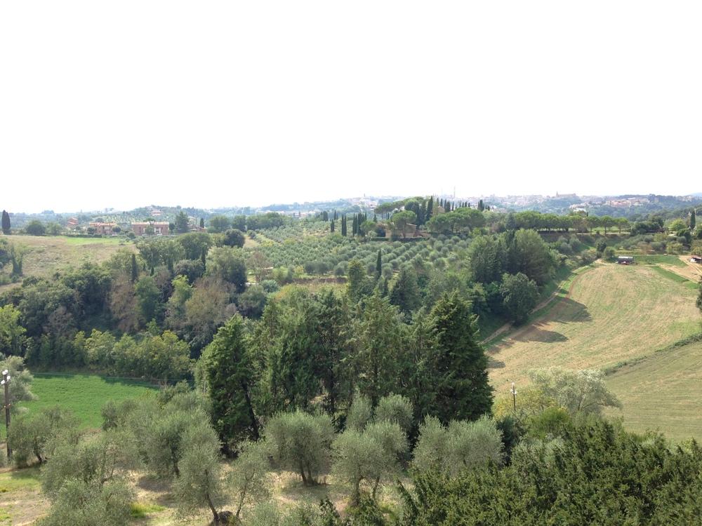 Revisiting Italy | Tuscany