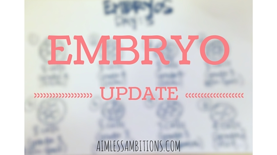 Embryo Update | IVF | Infertiliy